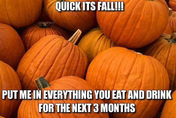 Pumpkin Season in Raleigh NC